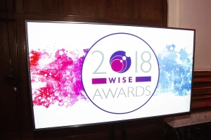 WISE Awards 2018 Reception 01